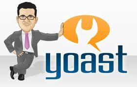 wordpress seo by yoast plugin setting