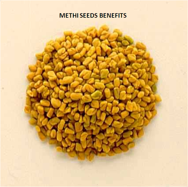 Household herb Methi Seeds Benefits is used world wide as medicine .Methi has strong smell and taste is quite bitter. Methi Seeds Benefits are used as a herb every where