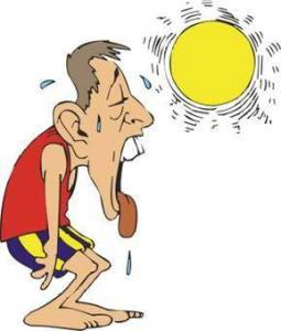 summer heat problems prevention tips