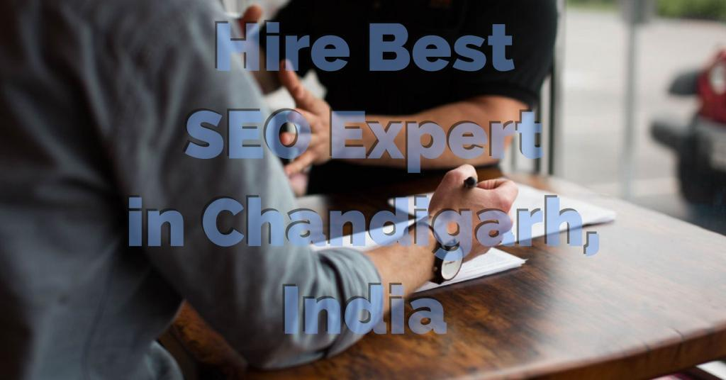 hire best seo expert in chandigarh, mohali and panchkula